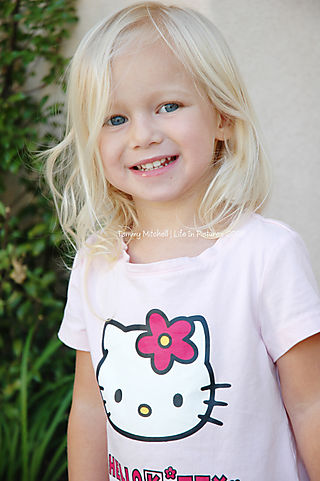 Ash hello kitty 97 web