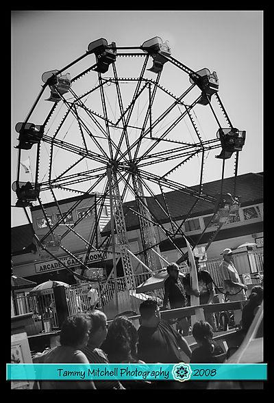 Ferris wheel web