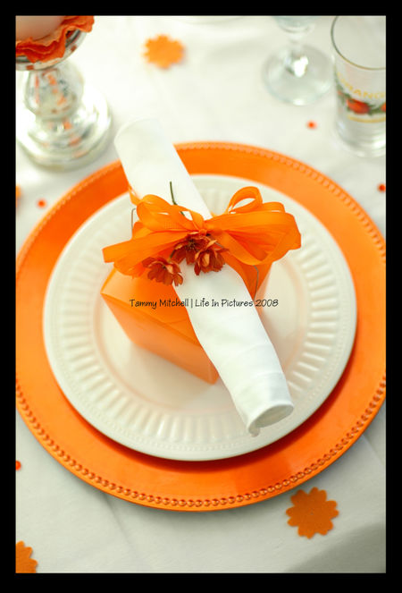 WEB place setting