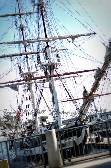 Tall ship web