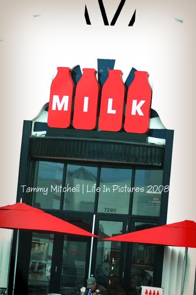 Milk_web