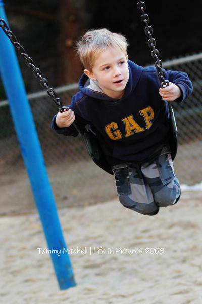 Swings_289_web